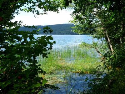 016-Am Laacher See
